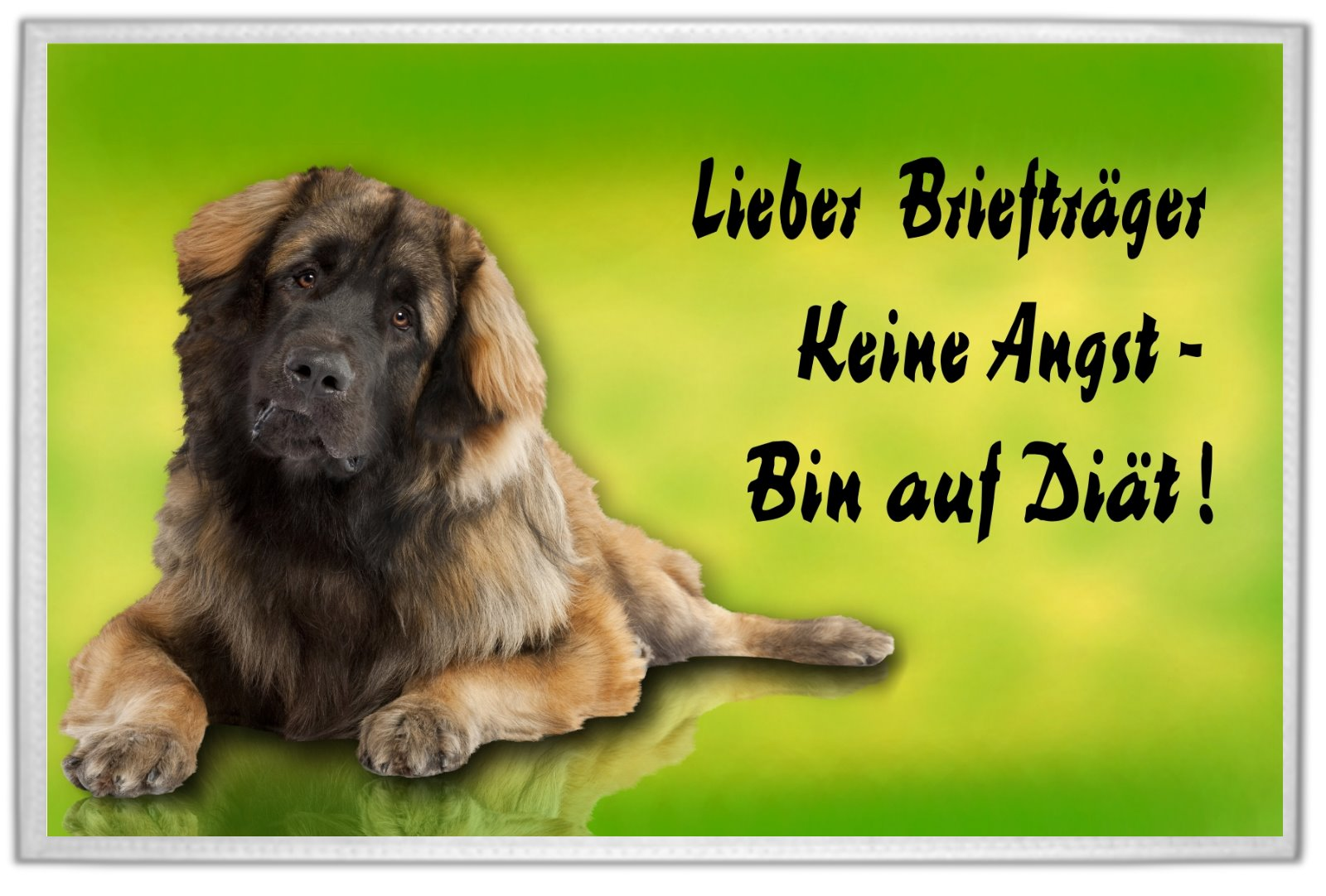 leonberger fu matte fu abtreter t rvorleger abtreter ebay. Black Bedroom Furniture Sets. Home Design Ideas